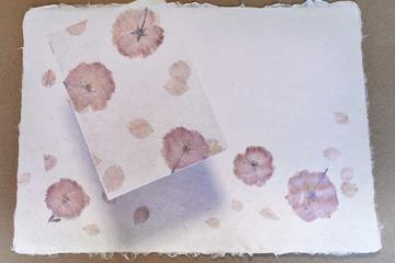Cherry Blossom Papermaking in Osaka - only in Spring!