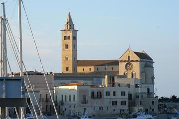 Escursione a terra da Bari: Tour di Trani e visita a un frantoio