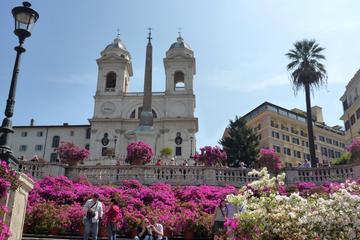Escursione a terra privata di Civitavecchia: Tour iconico di Roma con
