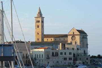 Shore Excursion from Bari: Trani Sightseeing and Traditional Olive...