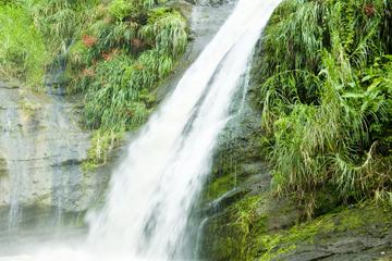 Grenada Island Tour: Concord Waterfall, Gouyave Nutmeg Station and...