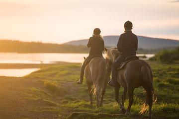 Arctic Horse Riding