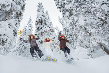 Lapland Winter Experience