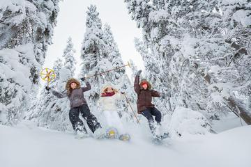 Lapland Winter Experience