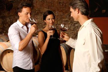 Mont Etna, dégustation de vins et visite du village au départ de...