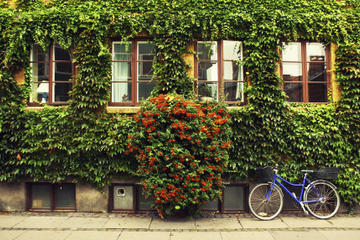 Private Tour: Copenhagen City Bike...