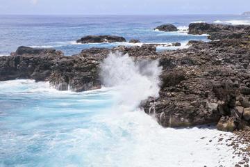 Excursion d'une journée dans le sud de l'Île Maurice: Réserve...