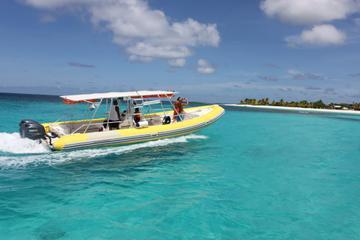 Excursão em Bote Motorizado com Mergulho de Snorkel em São Martim