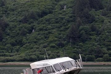 Excursión por la costa de Juneau: tirolina en Douglas Island desde...