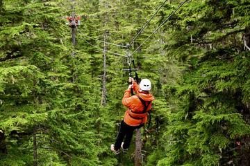 Excursión por la costa de Juneau...