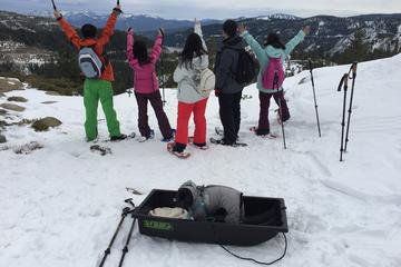 Day Trip Snowshoe Lake Tahoe Tour near Truckee, California