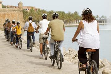Mallorca Landausflug: Palma Radtour einschließlich Kathedrale von...