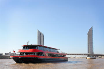 Wine-Tasting and River Cruise from Bordeaux
