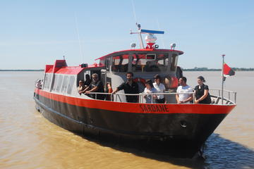 Half-Day Médoc Wine-Tasting Tour and River Cruise from Bordeaux