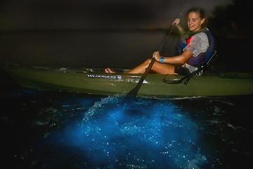 Dinoflagellate Bioluminescence Kayak Tour