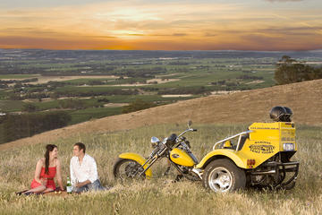 Barossa Uncut Trike Tour For 2
