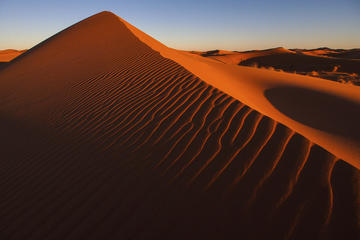 Dynkörning över röda sanddyner i Dubai med ökenläger och grillmiddag