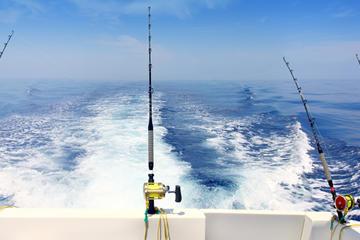 Dubai 4 hour private deep sea fishing trip with skipper 2018 for Fishing in dubai