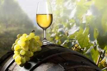 Private Shore Excursion: Ancient Ephesus and Wine Tasting Tour From...