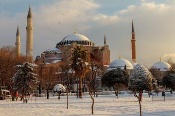 Privater halbtägiger Landausflug: Hagia Sophia, Hippodrom, Blaue...
