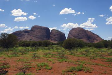 Von Alice Springs zum Ayers Rock und...