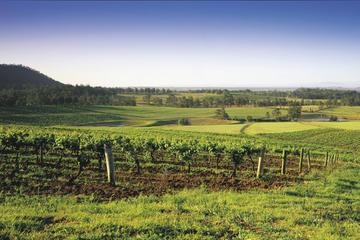 Excursão de degustação gastronômica e de vinho no Vale Hunter saindo...