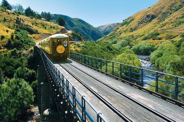 Dunedin Shore Excursion: Taieri Gorge Railway and the Otago Peninsula...