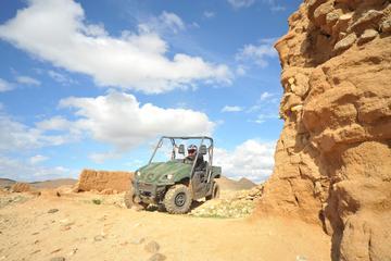 Buggytour woestijn en palmenbos bij Marrakesh inclusief Berber-dorp