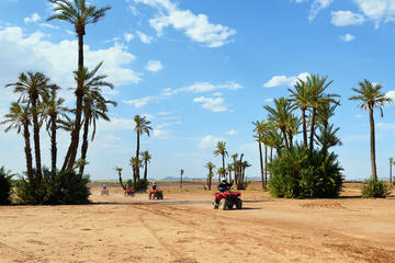Kamelen- en quad bike-tour vanuit Marrakesh