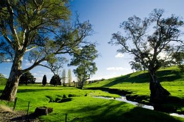 Principales attractions d'Adélaïde et de Hahndorf avec croisière sur...