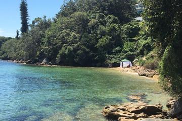 Our Best Hidden Harbour Beaches Tour