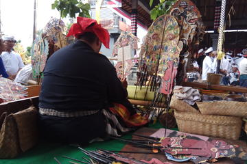 Bali Experience: A day holistic tour with Shaman ( Meditation and Purification )