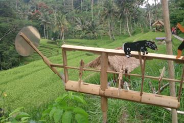 Bali Shore Excursions to  Ubud Country Side