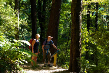 Self-Guided Queen Charlotte Track...