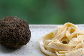 Mountain Hike With Truffle Hunting Demonstration