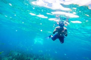 All Inclusive Reef Snorkel e Shopping