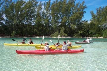 Aventure en jeep et en kayak à l'île de Grand Bahama au départ de...