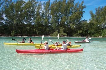 Grand Bahama Jeep and Kayak Tour from Freeport