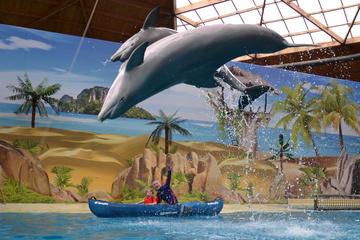 Boudewijn Seapark and Dolfinarium Entrance Ticket