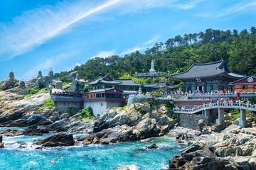 海東龍宮寺、龍頭山公園、冬柏島を訪ねる釜山ベス…