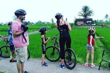 Cycling Experience Taro - Ubud