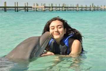 Ilha particular para nado com os golfinhos saindo de Nassau