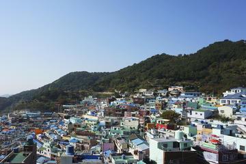 甘川洞文化村と梵魚寺を含む釜山市内観光プライベート ツアー