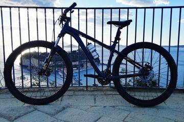 Panoramic Bike Tour of Naples