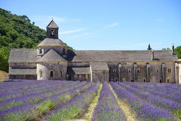 Luberon Experience : Private Chauffeur