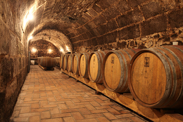 Excursion dans les vignobles d'Etyek avec dîner au départ de Budapest