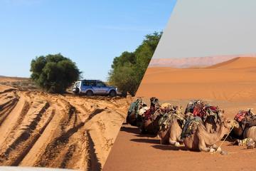 Oasis Aït Mansour & Tafraout from Agadir