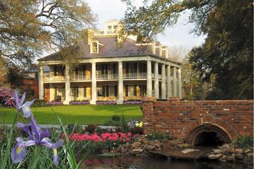 Visita a la plantación Houmas House
