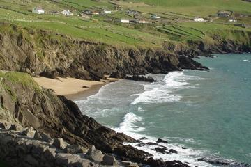 Dingle Peninsula Private Tour from Killarney, Kenmare or Sneem