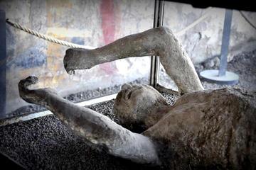 Pompeii Tour from Sorrento-Positano-Praiano-Amalfi-Ravello or others